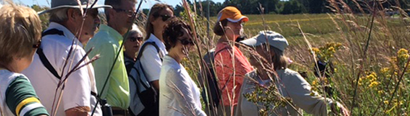 Sylvia Marek leading a prairie walk - storing September