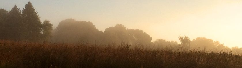 Mist rising over the prairie at Holy Wisdom Monastery